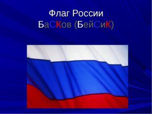 Флаг России БаСКов (БейСиК)