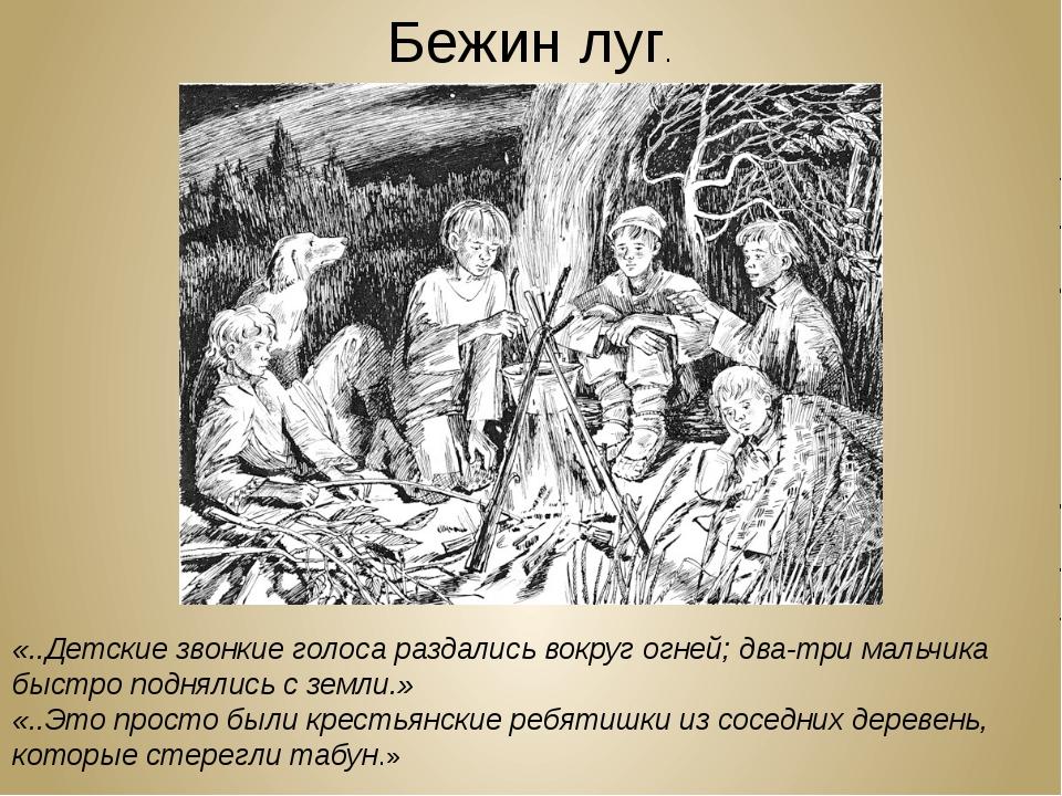 Бежин луг. «..Детские звонкие голоса раздались вокруг огней; два-три мальчика...