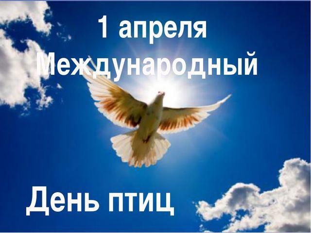 1 апреля Международный День птиц