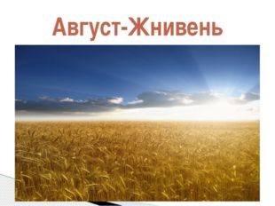 Август-Жнивень