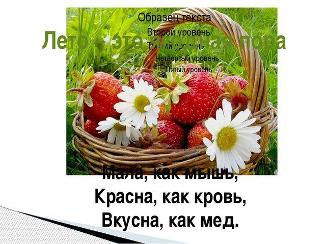 Мала, как мышь, Красна, как кровь, Вкусна, как мед. Лето – это ягодная пора