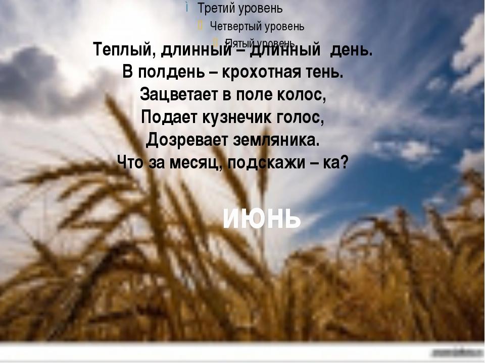 Теплый, длинный – длинный день. В полдень – крохотная тень. Зацветает в поле...
