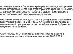 В настоящее время в Пермском крае реализуется долгосрочная целевая программа