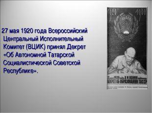 27 мая 1920 года Всероссийский Центральный Исполнительный Комитет (ВЦИК) прин