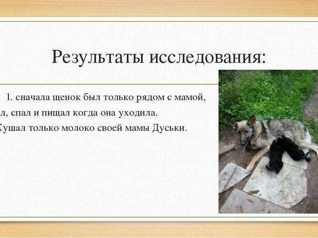 Результаты исследования: 1. сначала щенок был только рядом с мамой, ел, спал...