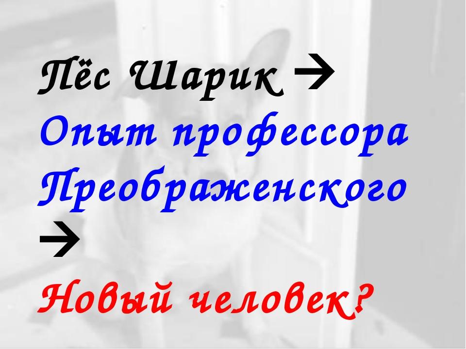 Пёс Шарик  Опыт профессора Преображенского  Новый человек?