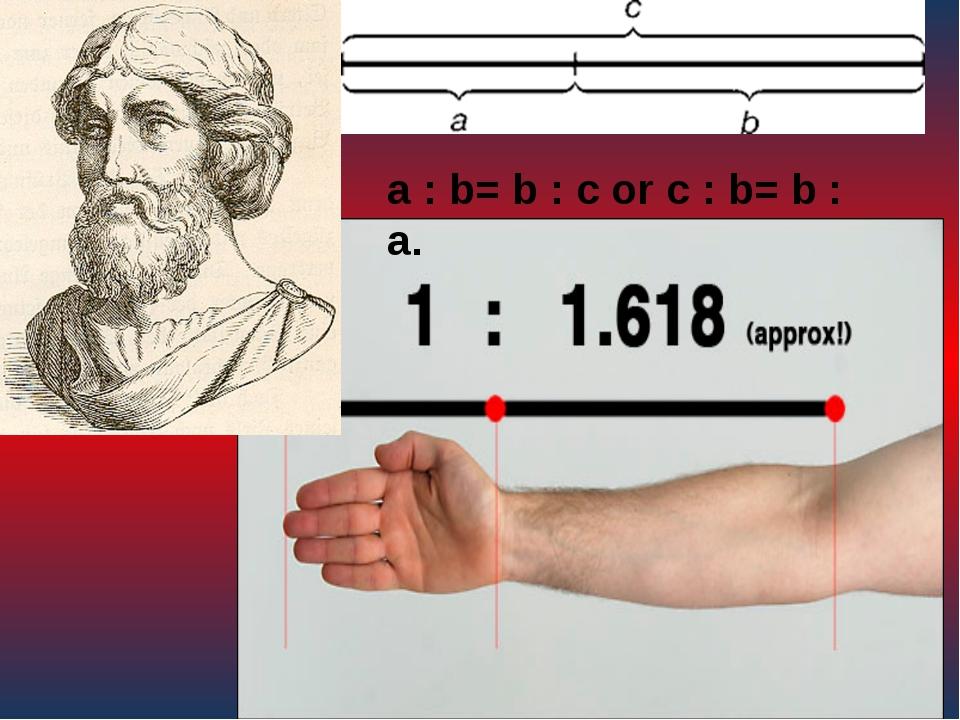 a : b= b : c or с : b= b : а.