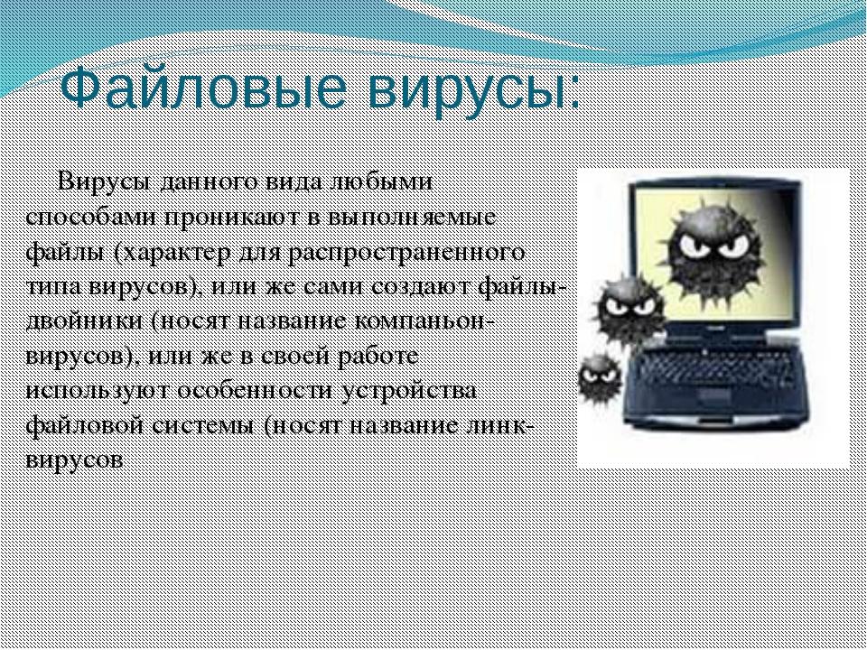 Файловые вирусы: Вирусы данного вида любыми способами проникают в выполняемые...