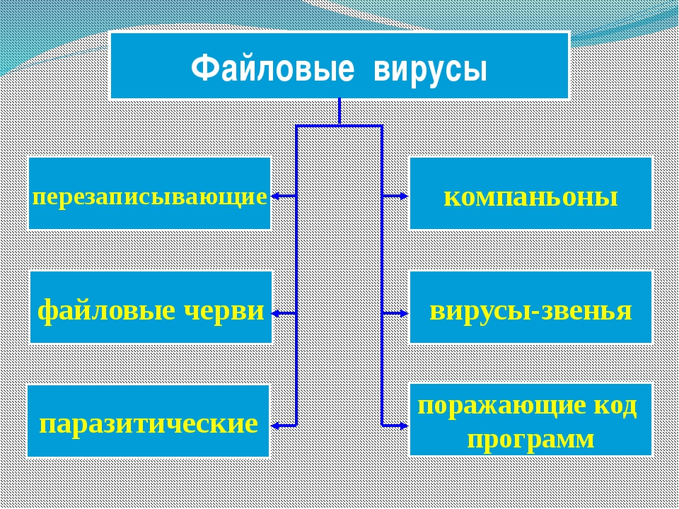 компаньоны Файловые вирусы перезаписывающие вирусы-звенья файловые черви пара...
