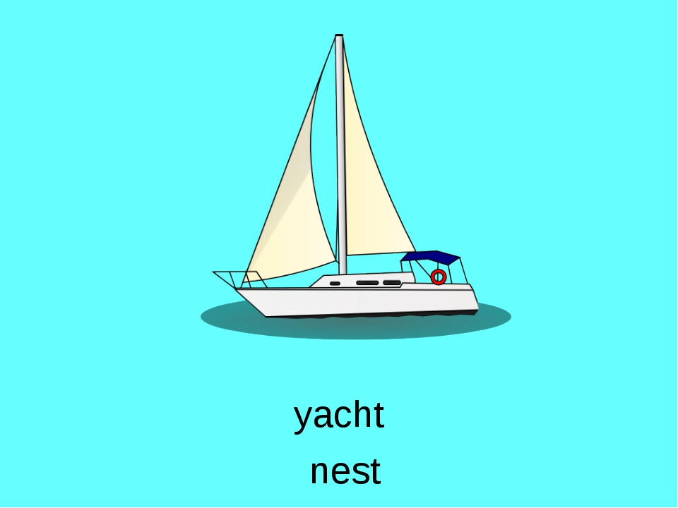 yacht nest