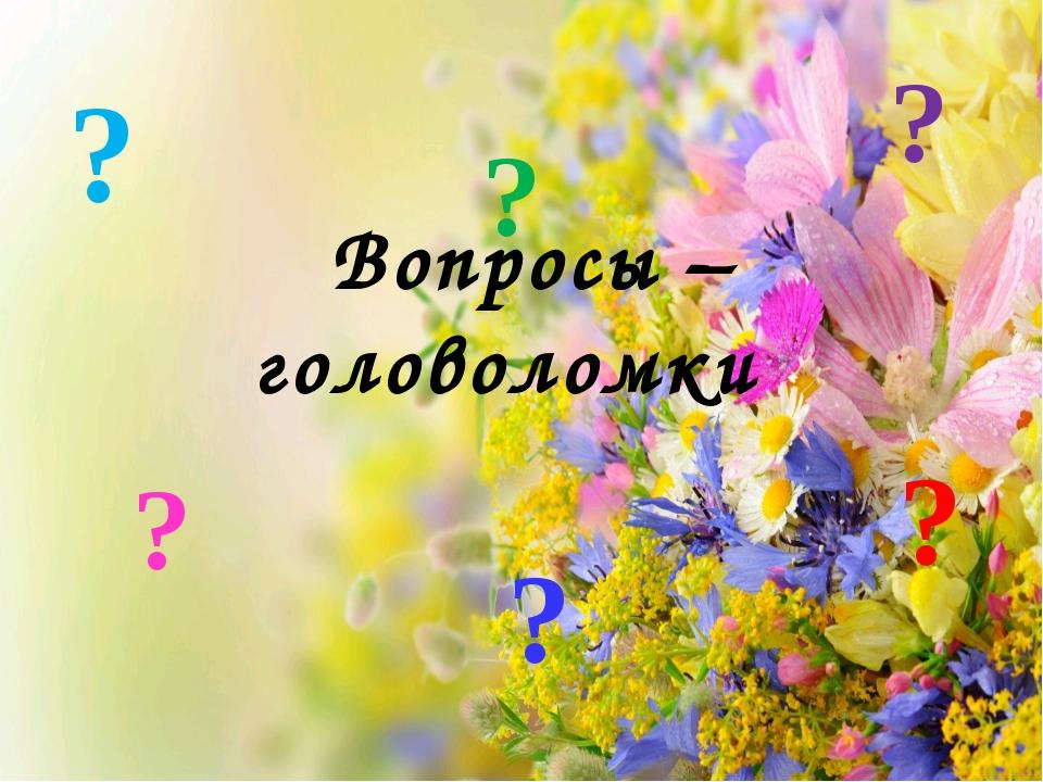 Вопросы – головоломки ? ? ? ? ? ?
