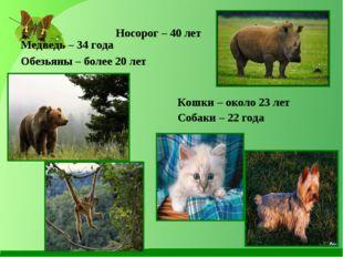 Носорог – 40 лет Медведь – 34 года Обезьяны – более 20 лет Кошки – около 23 л