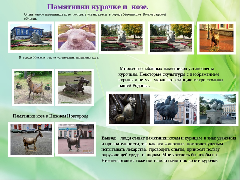 Памятники курочке и козе. Очень много памятников козе ,которые установлены в...