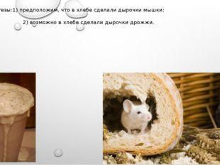 Гипотезы:1) предположим, что в хлебе сделали дырочки мышки; 2) возможно в хле