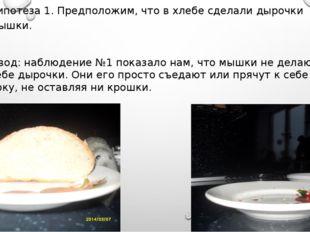 Гипотеза 1. Предположим, что в хлебе сделали дырочки мышки. Вывод: наблюдение