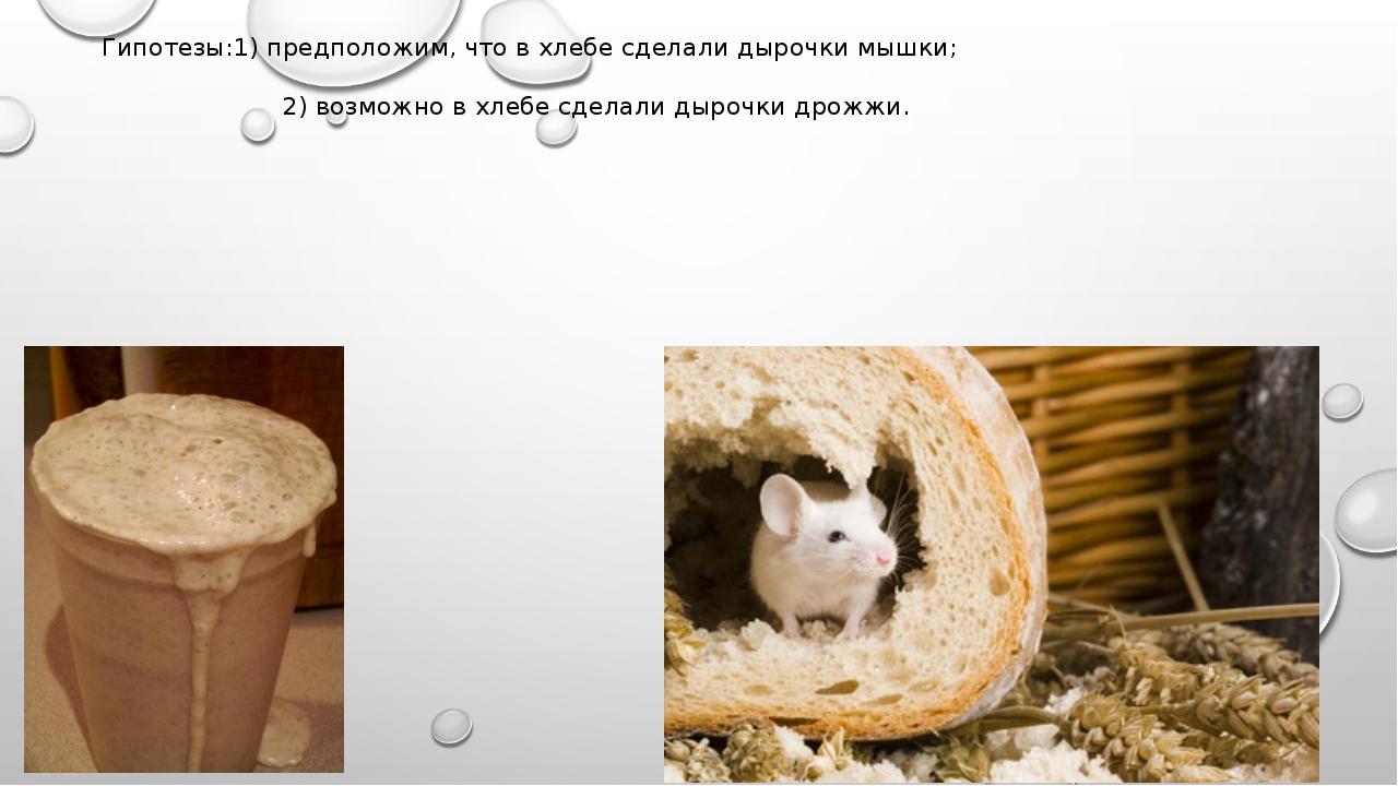 Гипотезы:1) предположим, что в хлебе сделали дырочки мышки; 2) возможно в хле...