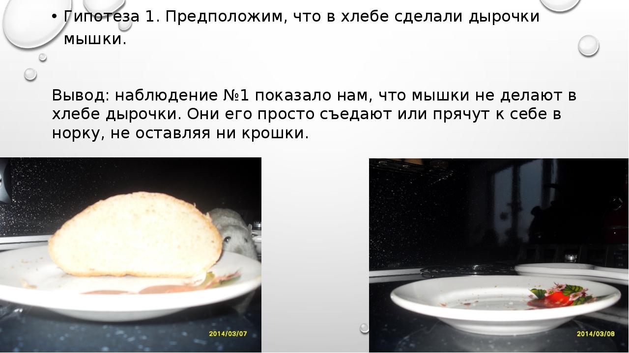 Гипотеза 1. Предположим, что в хлебе сделали дырочки мышки. Вывод: наблюдение...
