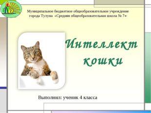 Интеллект кошки Выполнил: ученик 4 класса Муниципальное бюджетное общеобразов