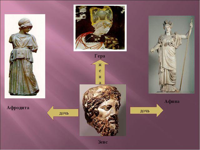 Зевс дочь дочь ж е н а Гера Афина Афродита