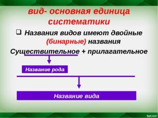 вид- основная единица систематики Названия видов имеют двойные (бинарные) наз