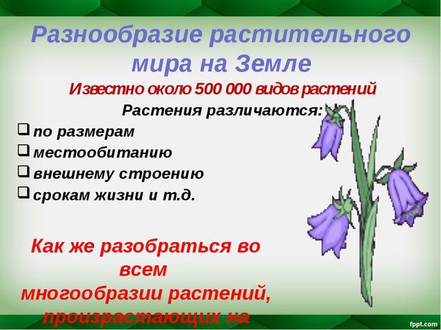 Разнообразие растительного мира на Земле Известно около 500 000 видов растени...
