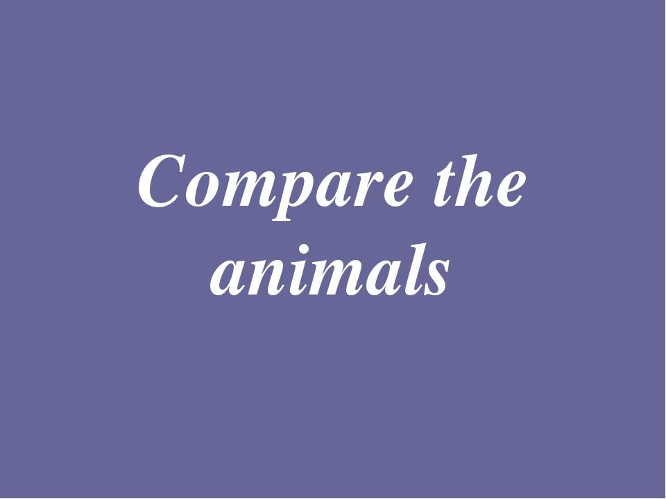 Compare the animals