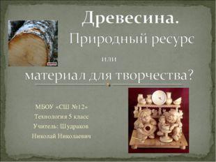 МБОУ «СШ №12» Технология 5 класс Учитель: Шудраков Николай Николаевич