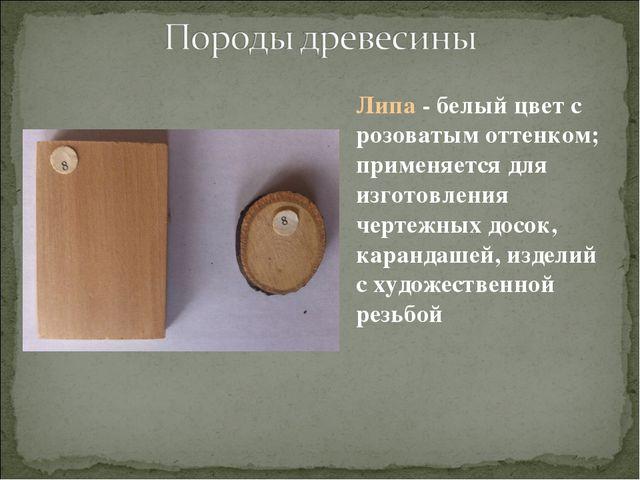 Липа - белый цвет с розоватым оттенком; применяется для изготовления чертежны...