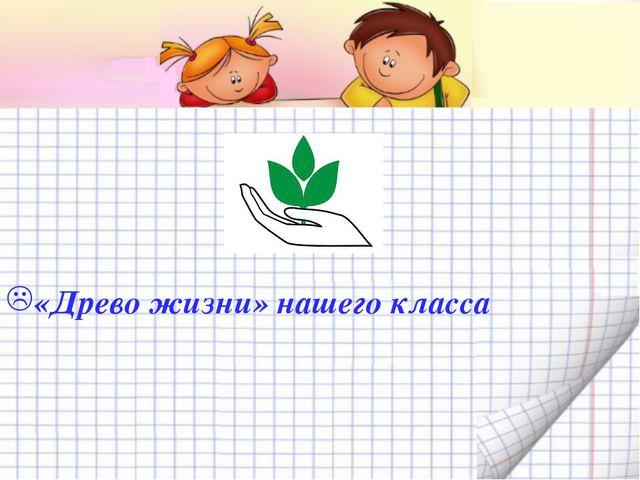 «Древо жизни» нашего класса