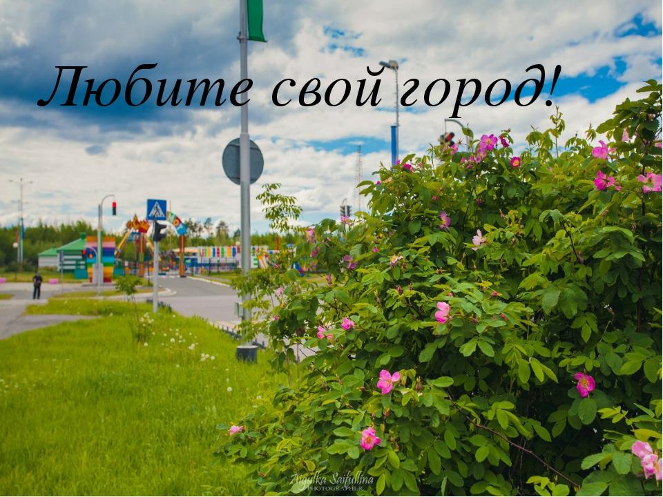 Любите свой город!