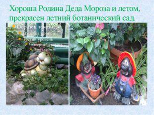 Хороша Родина Деда Мороза и летом, прекрасен летний ботанический сад.