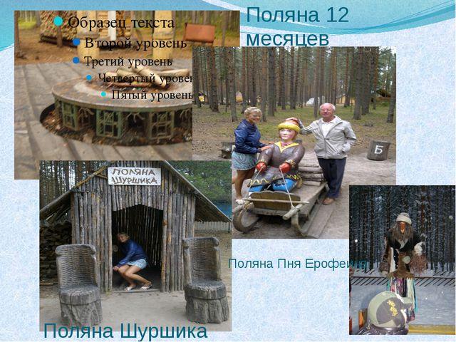 Поляна 12 месяцев Поляна Шуршика Поляна Пня Ерофеича