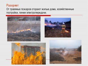 Разоряет От травяных пожаров сгорают жилые дома, хозяйственные постройки, лин