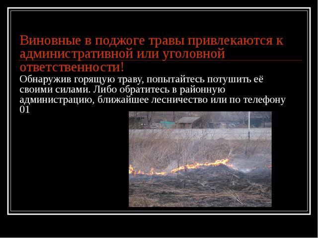 Виновные в поджоге травы привлекаются к административной или уголовной ответс...