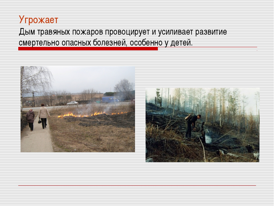 Угрожает Дым травяных пожаров провоцирует и усиливает развитие смертельно опа...