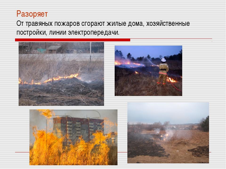 Разоряет От травяных пожаров сгорают жилые дома, хозяйственные постройки, лин...