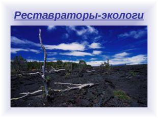 Реставраторы-экологи