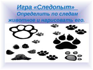 Игра «Следопыт» Определить по следам животное и нарисовать его.