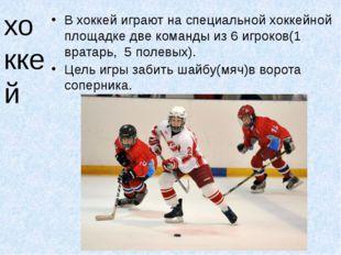 хоккей В хоккей играют на специальной хоккейной площадке две команды из 6 игр