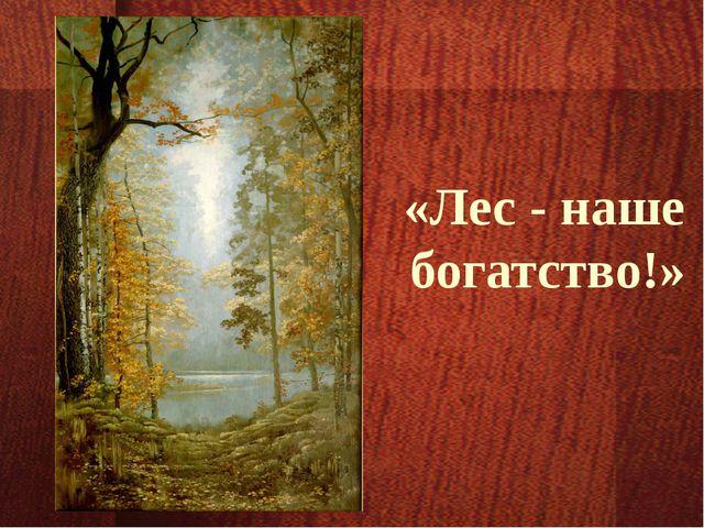 «Лес - наше богатство!»