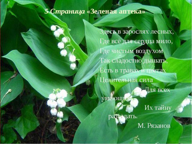 5 Страница «Зеленая аптека» Здесь в зарослях лесных, Где всё для сердца мило,...