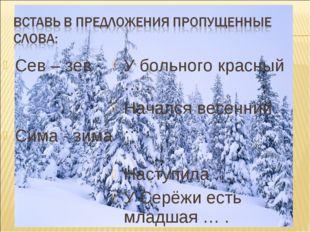 Сев – зев Сима - зима У больного красный … . Начался весенний … . Наступила …