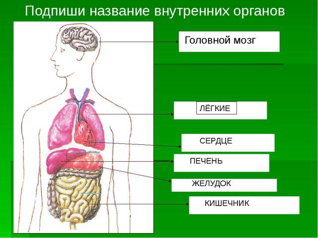Системы органов человека Опорно-двигательная 10 20 30 Кровеносная 10 20 30 Не...