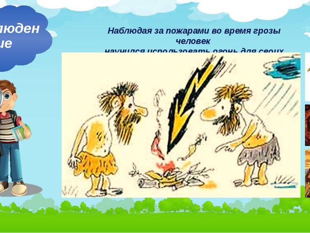 Наблюдая за пожарами во время грозы человек научился использовать огонь для с...