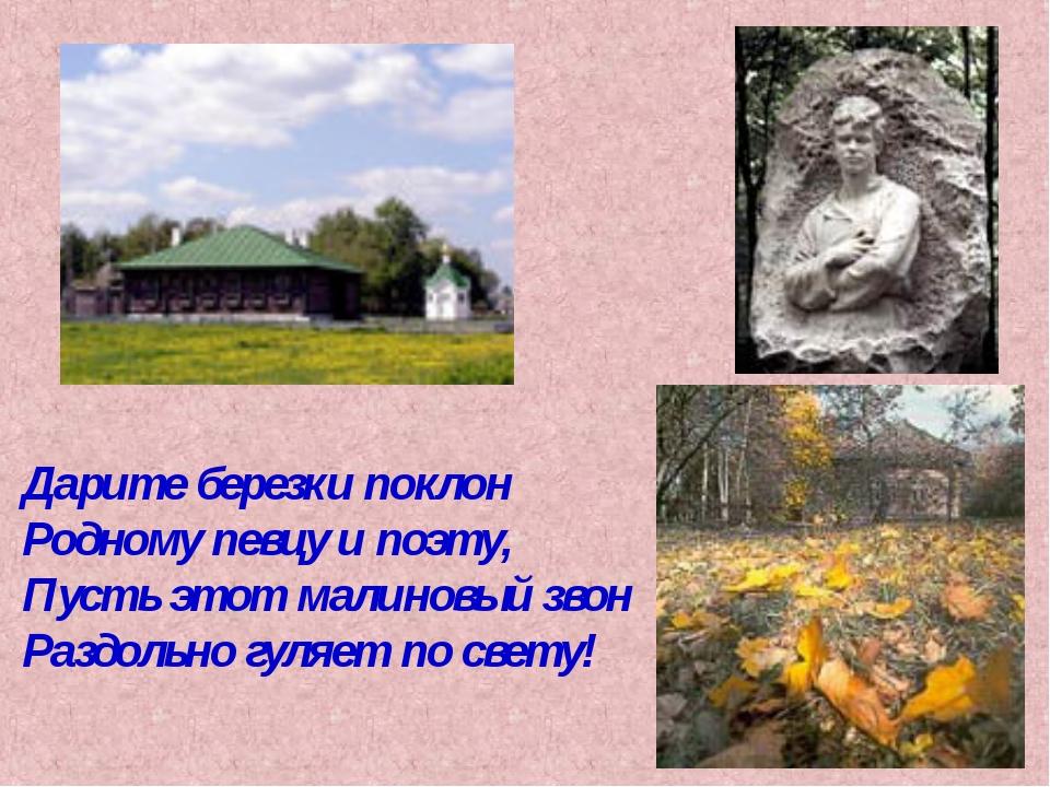 Дарите березки поклон Родному певцу и поэту, Пусть этот малиновый звон Раздол...