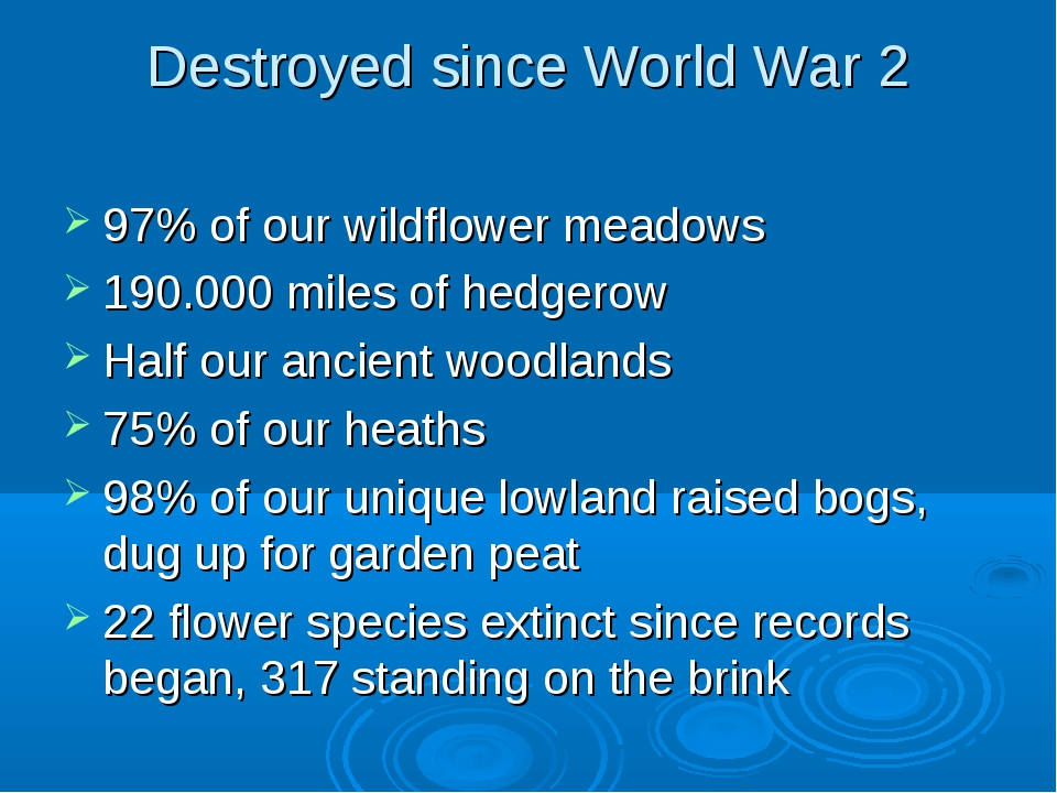 Destroyed since World War 2 97% of our wildflower meadows 190.000 miles of he...