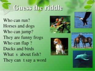 Guess the riddle Who can run? Horses and dogs Who can jump? They are funny fr