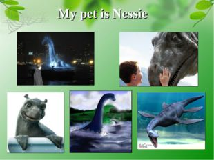 My pet is Nessie