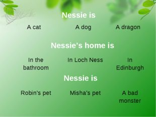 Nessie is	 A cat	A dog	A dragon Nessie's home is	 In the bathroom	In Loch Nes