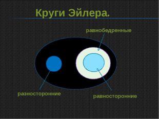 Круги Эйлера. равнобедренные равносторонние разносторонние